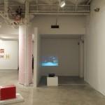 """Center: Haraldur Jónsson's video projection """"Arctic Fruits"""""""